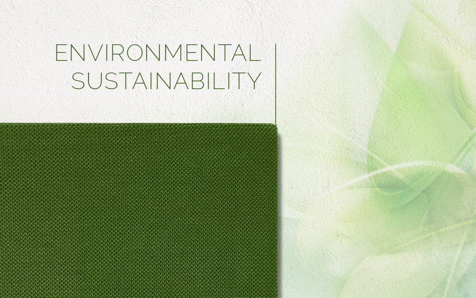 environmental sustainability caruso acoustic